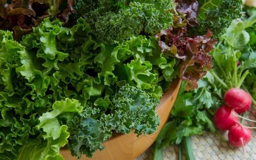 Leafy greens and radish's